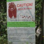tout est indiqué les ours sont dangereux!!!