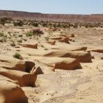 du sable dur comme du rocher!